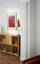 Вертикальный радиатор Arbonia 2180/04 N12 3/4 RAL 9016